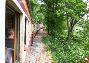 Reflecting on the past and veg cooking in Kanchanaburi