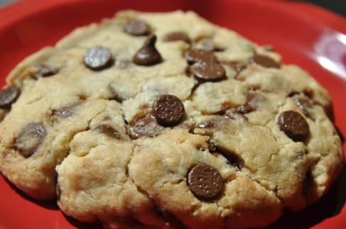 How To Make A Chocolate Chip Cookie For One (Click Here for the Recipe)