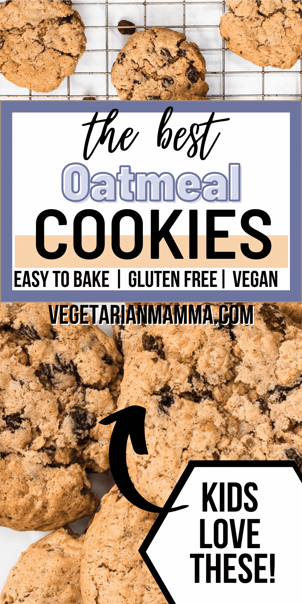 These Vegan Oatmeal Cookies are totally gluten free and a great Celiac snack! They're super easy to whip together with gluten-free rolled oats, yummy raisins, and a pinch of cinnamon.