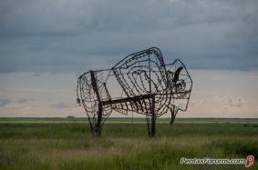field-art-5819