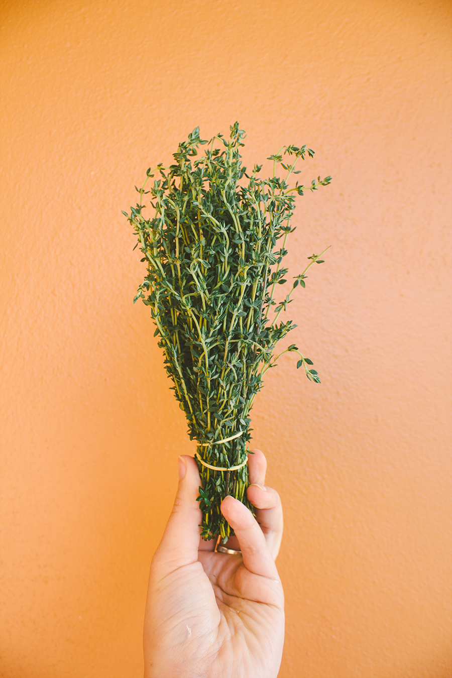 thyme popsicles