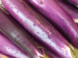 Eggplant_lg