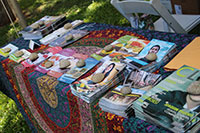 vegan literature with rock paperweights on a colorful table at VegFest Oahu 2016
