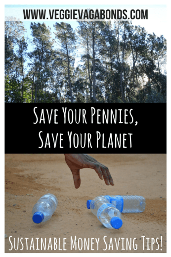 Save Your Pennies, Save Your Planet