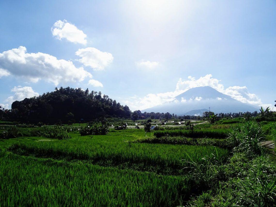 Off the Beaten Bali