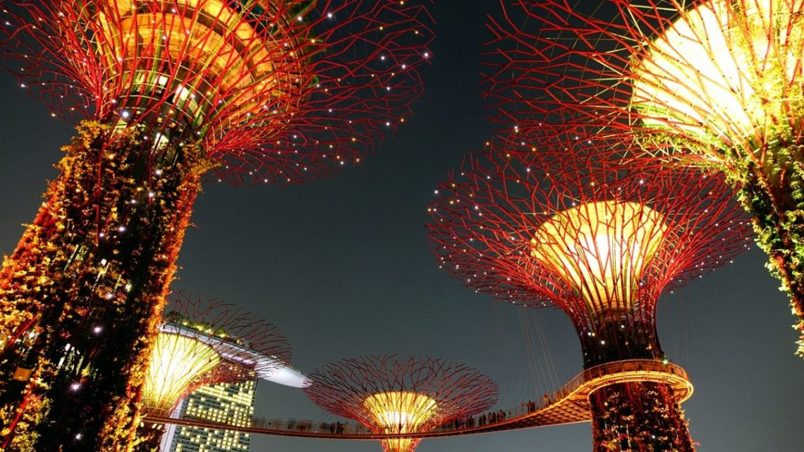 Singapore Gardens by the Bay at Night