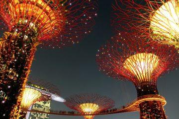 Singapore gardens at night