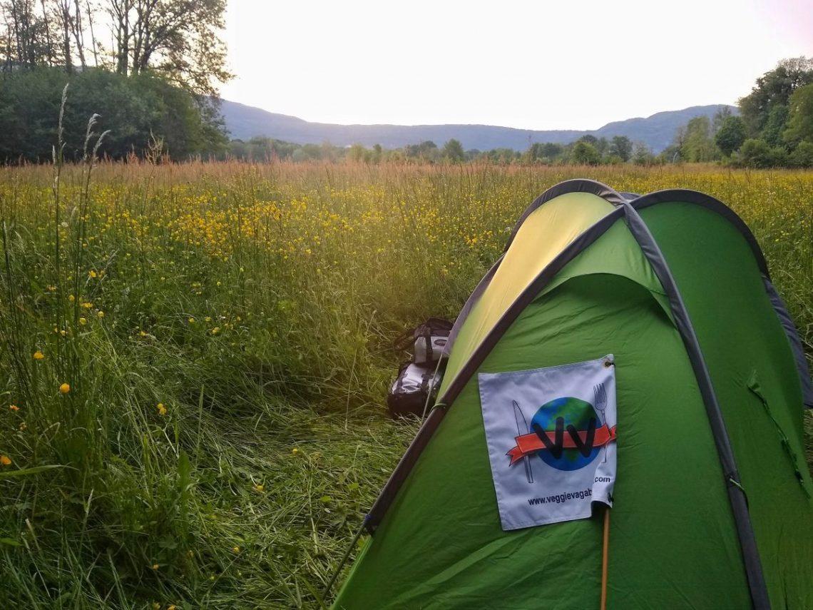 Camping in flower field
