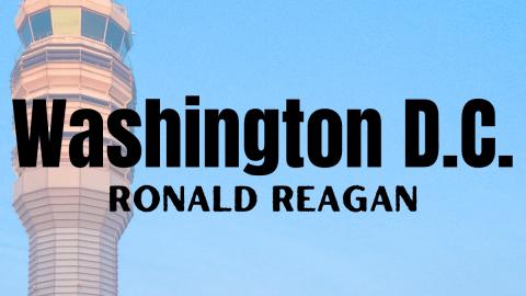 Ronald Reagan Airport Vegan Options