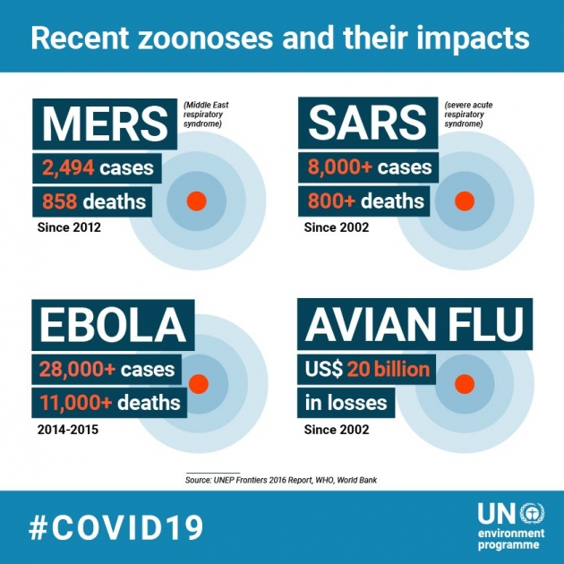unep covid-19 zoonosis emergence ebola sara avian flu mers