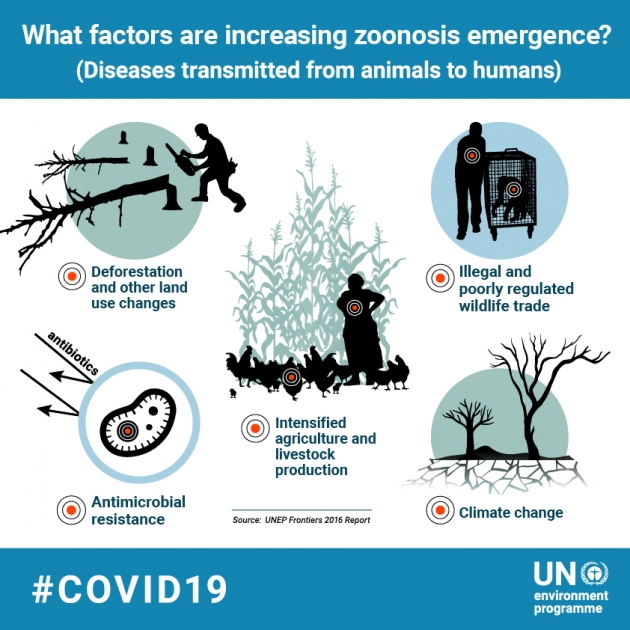 unep covid-19 zoonosis emergence