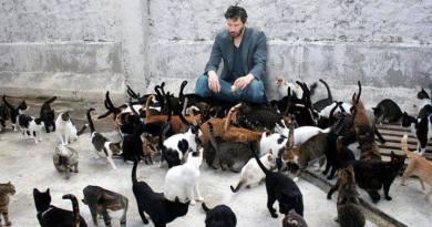 Ator americano Keanu Reeves salva gatos da eutanásia