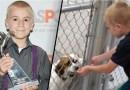 Menino de 7 anos recebe prêmio por salvar mais de 1.300 cachorros