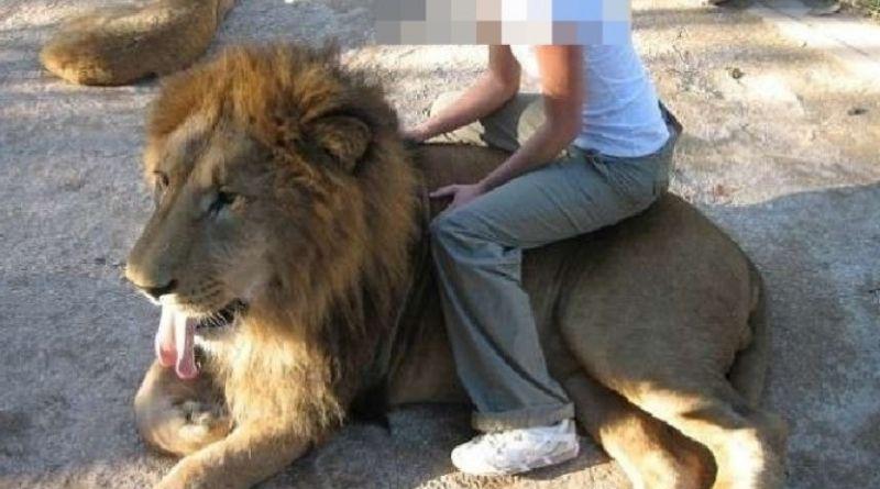Zoo denunciado por dopar animais é fechado na Argentina