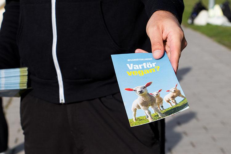 En hand håller fram en folder med texten Varför vegan?