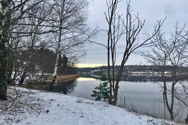 Vinterbild med vattnet vid Hagaparken