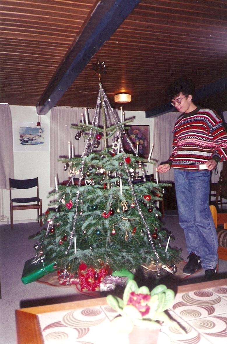 Últimos preparativos na árvore de Natal
