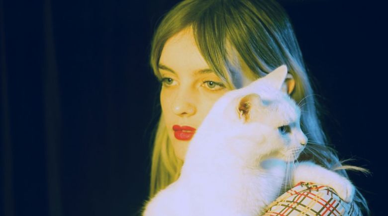 hayley-stewart-cat
