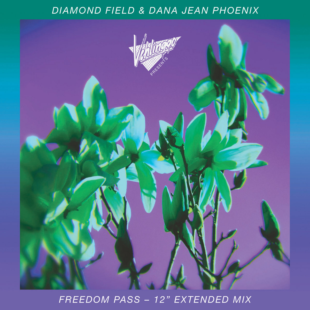 dana jean diamond field freedom pass