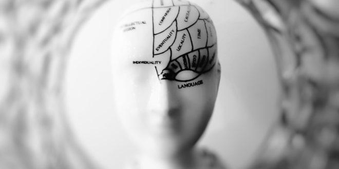 Une nouvelle IA révolutionnaire est basée sur le cerveau humain – LeBigData