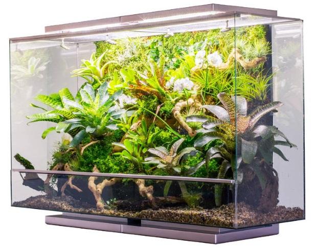 Pourquoi les appareils IoT posent problème : le tristement célèbre cas de l'aquarium connecté – ZDNet France