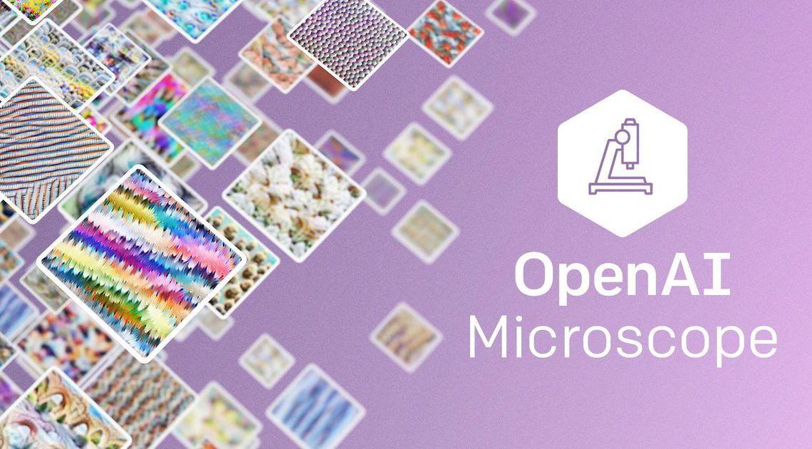 Microscope : l'outil développé par OpenAI pour comprendre le fonctionnement des algorithmes – Siècle Digital