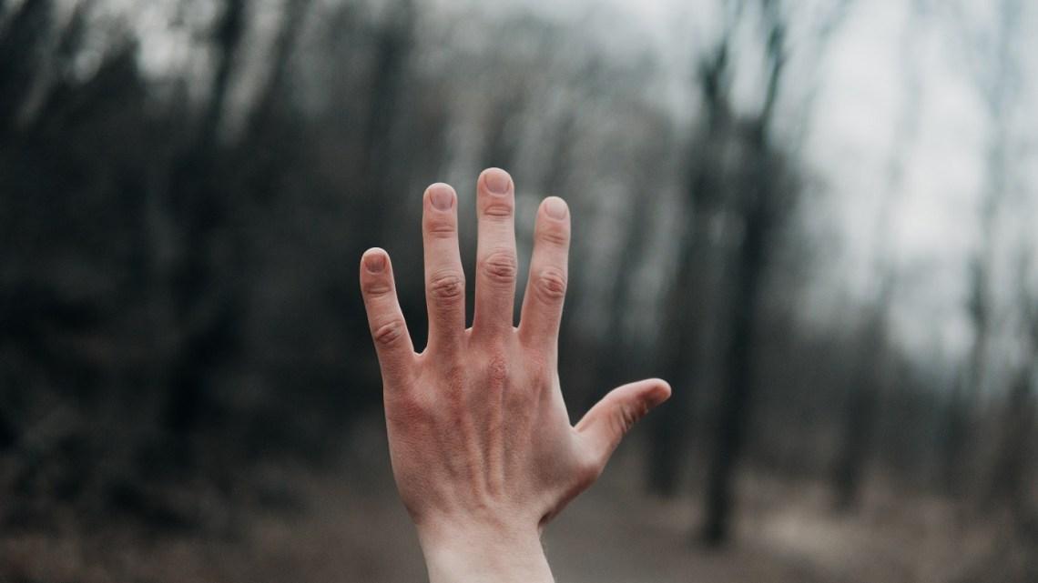Cette IA peut identifier une personne en observant les veines de ses mains – Presse-citron