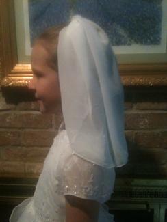 Communion Chiffon Veil