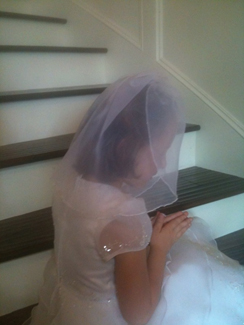 Organza Communion Veil