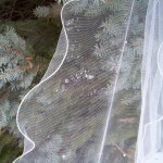 lettuce edge wedding veils