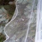 lettuce edge wedding veils