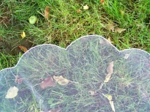 scalloped edge veil true scalloped