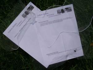 Scalloped edge veil samples