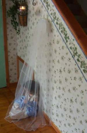 traditional chapel veil