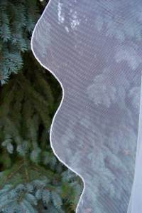 English net veil with a true scalloped edge
