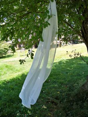 Silk chiffon veil with silk ribbon edge