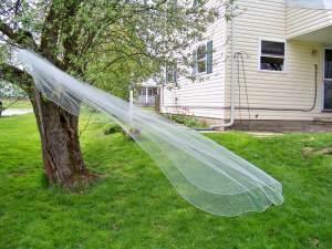 Rhinestone edge long veil