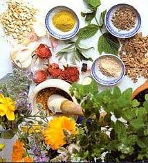 herbs to get rid of varicose veins