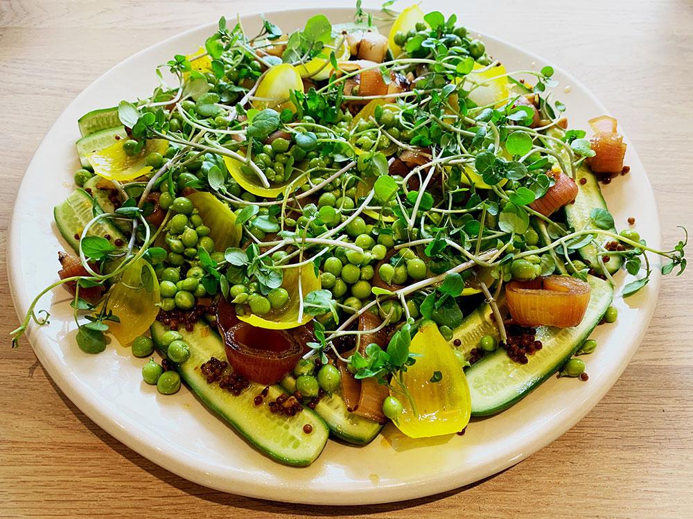 Salat af let syltet skole agurker og grillet skalotteløg