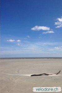 Rihiger Strand von St Simons Island, GA, nach Hurrikan Michael