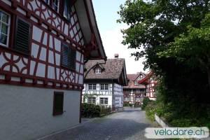 Ottenberg, sentier du vin de Weinfelden