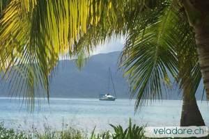vela dare devant une île des San Blas