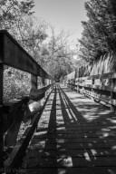 Heritage_Park_Walk-3685