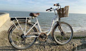 vélo-adulte-à-assistance-électrique