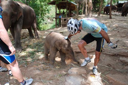 thai swiss cycling 9