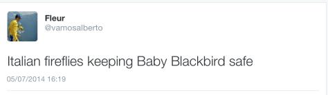 G Baby Blackbird