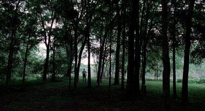 velveteyes.net_the-tree-of-life_07