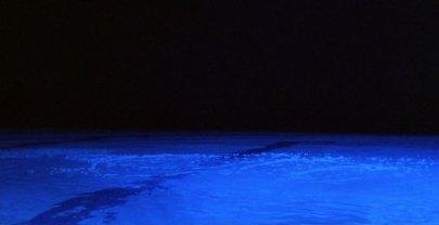 velveteyes.net_trois-couleurs-bleu_35