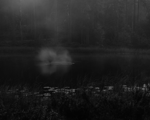 From the series: Slash & BurnFinnskogen—directly translated as The Forest of the Finns—is a large, contiguous forest belt along the Norwegian-Swedish border, where farming families from Finland settled in the early 1600s. The immigrants—called For