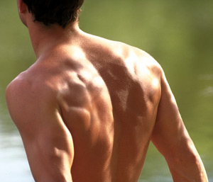 Man-Back-Muscles-ART